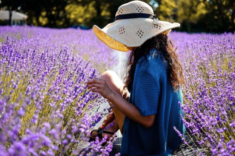Fashionable natural textile fibers