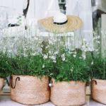 Fibras textiles naturales vegetales-gabrielfariasiribarren.com